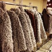 Hello, the coats!